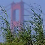 View of Golden Gay Bridge from Crissy Field