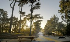 Rob Hill campground in the Presidio